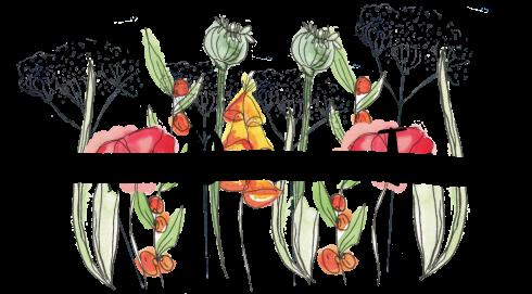 Anne's duurzame tuinen