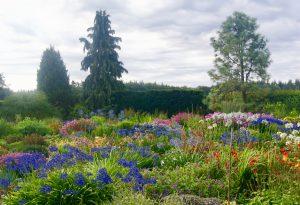 Annes duurzame tuinen Gardeners World